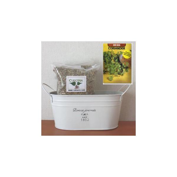 コリアンダー/パクチーの栽培セット標準セット【液体肥料なし】/プランターホワイト