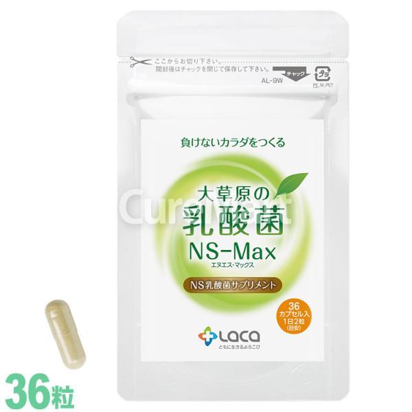 大草原の乳酸菌 NS-Max [36粒] 【あすつく】【送料無料】 大草原 乳酸菌 NS乳酸菌 善玉菌|curemart