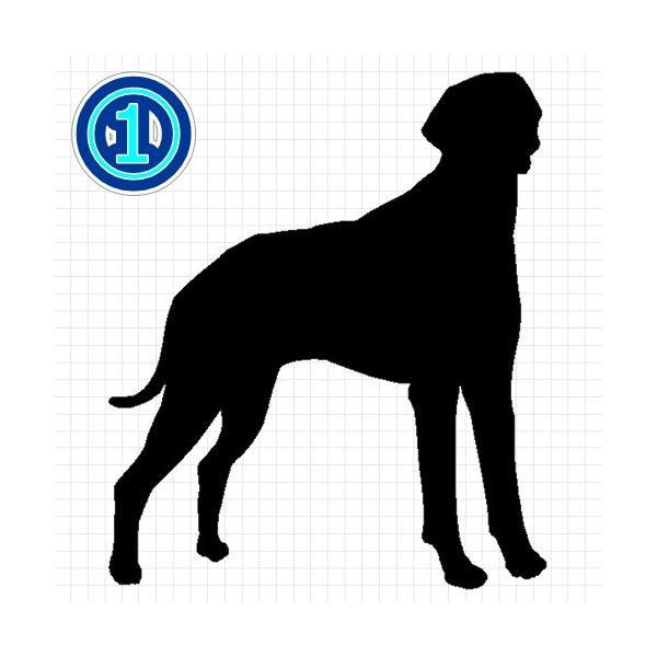 イングリッシュポインター 犬 シルエット ステッカー プレゼント付|cuttingsoul|02
