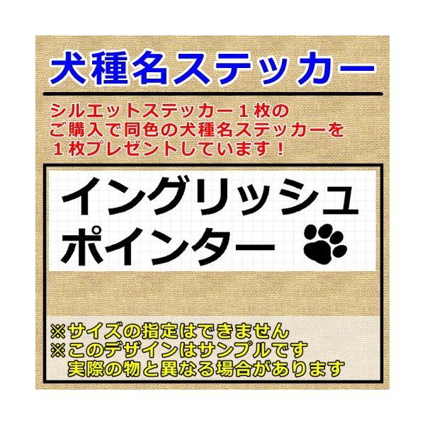 イングリッシュポインター 犬 シルエット ステッカー プレゼント付|cuttingsoul|05