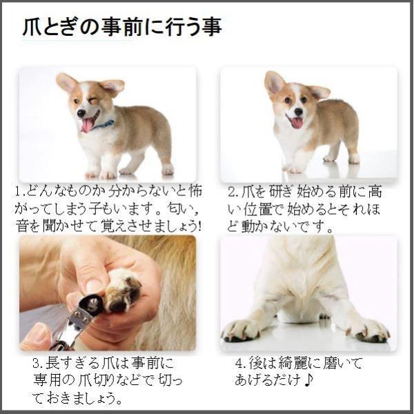 ペット 爪切り 犬 猫 爪 手入れ やすり 電動|cwstore|03