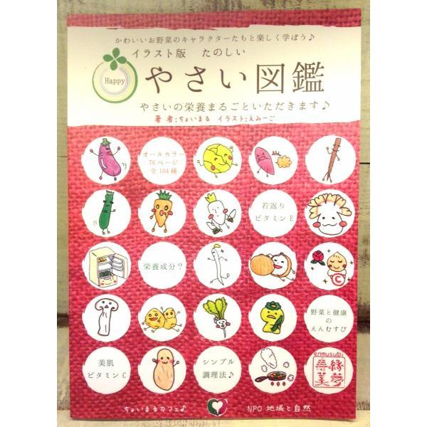 【3冊までメール便対応可】イラスト版たのしい野菜図鑑|cyoimaru