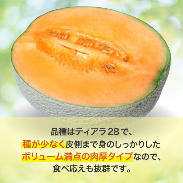 富良野山部産赤肉メロン太陽の王様2.2kg 2玉 cyuoseika 05