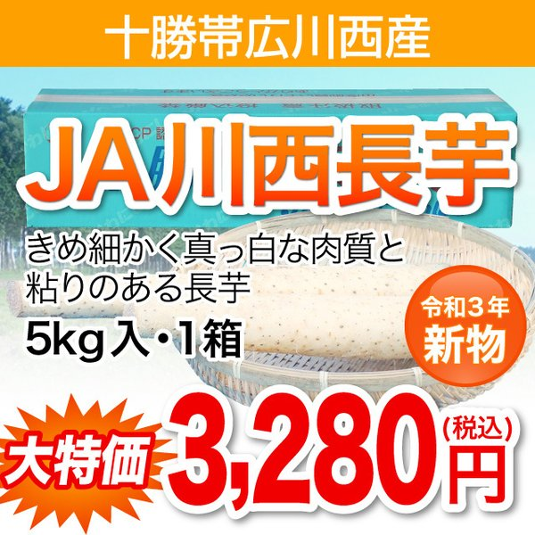 十勝JA川西産長芋5kg入・1箱