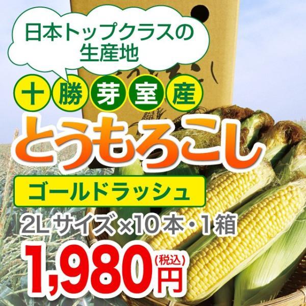 【十勝芽室産】とうもろこし(ゴールドラッシュ)2Lサイズ×10本・1箱