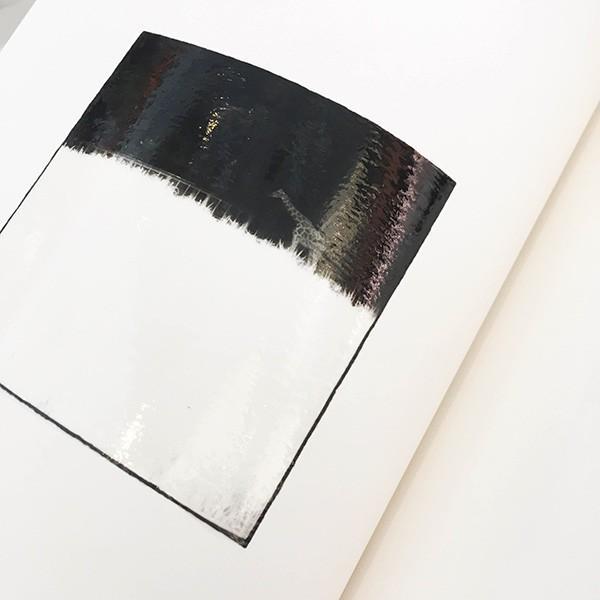 平野タカシ『STEREOTYPICAL BEHAVIOR』|d-tsutayabooks|04