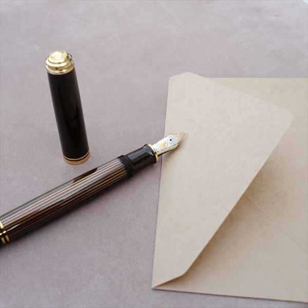 [限定品] ペリカン 万年筆 M800 ブラウンブラック|d-tsutayabooks|03