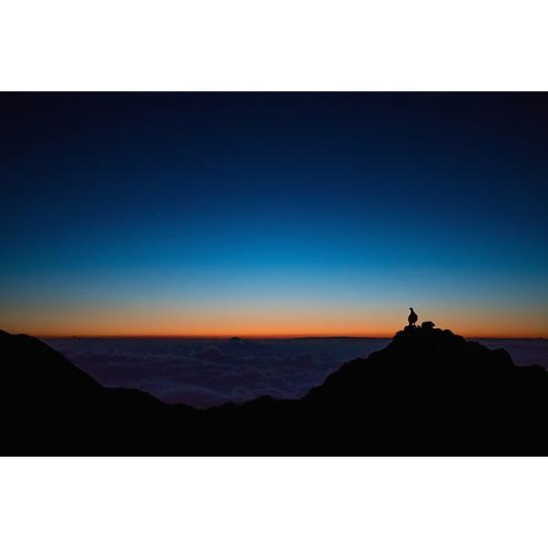 雷鳥 Messneger from god, who wearing scenery|d-tsutayabooks|03