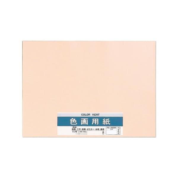色画用紙 N422 うすもも 10セット Pエ-N42RP 代引き不可 宅配便 メーカー直送(ギフト対応不可)