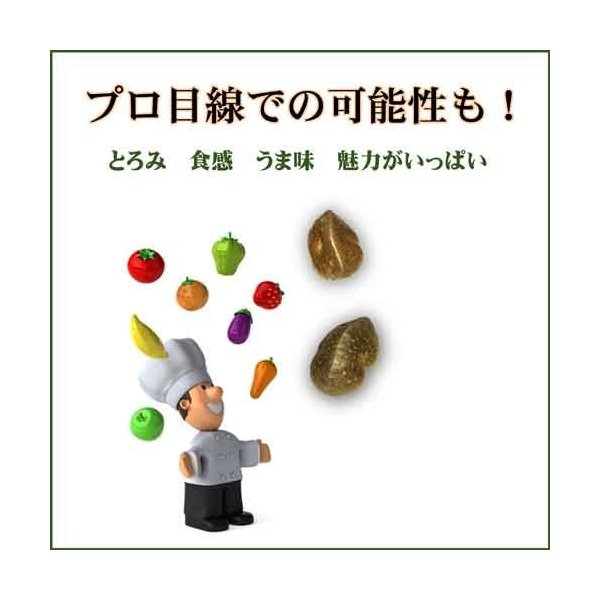 宇宙イモ エアーポテト1kg  形の良いものを厳選 旬の野菜 ヤマノイモ カシュウイモ 粘りと食感の新健康食材|daichi-megumi|03
