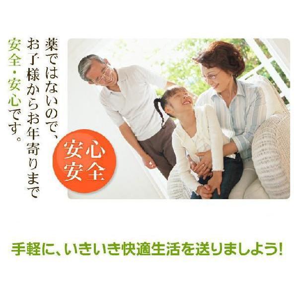 乾燥えのき茸 50gx5 えのき氷にも 長野県産 干しえのき茸|daiichibutsusan|05