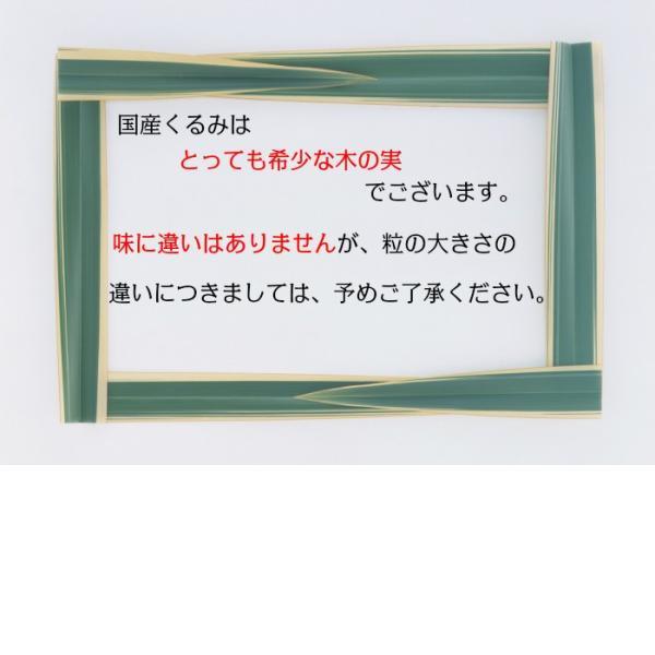 くるみ 国産 500g 殻つき 希少な菓子くるみ クルミ|daiichibutsusan|02