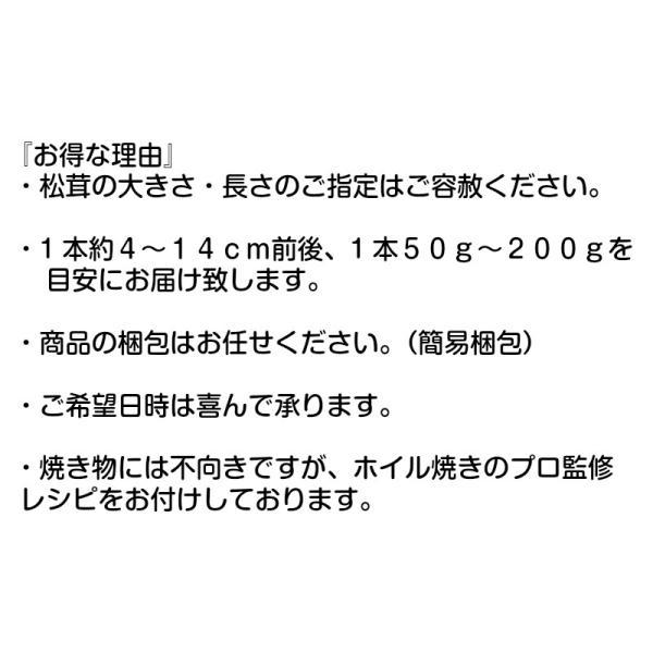 松茸1kg 送料無料  人気のホール品限定 サイズおまかせ 銀座有名店監修レシピ付き 急速生冷凍品|daiichibutsusan|05