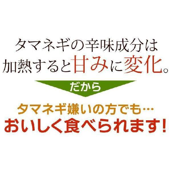たまねぎ氷 8袋×350g 正規販売店 村上祥子先生監修 とってもお得な送料 玉ねぎ氷|daiichibutsusan|06