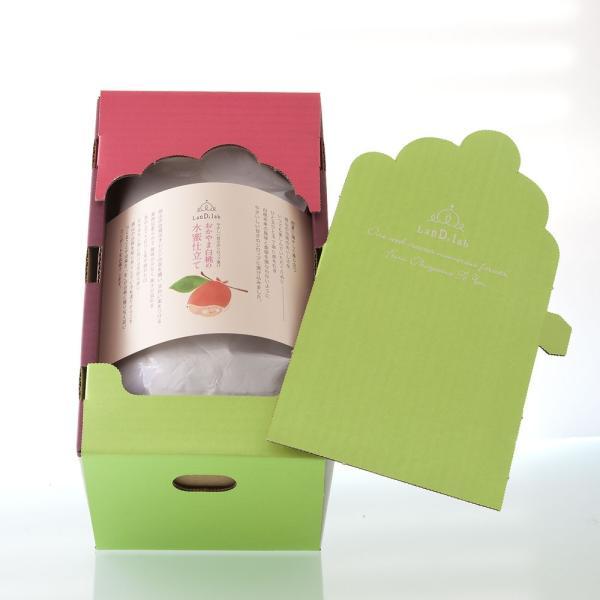 フルーツコンポート おかやま白桃の水蜜仕立て 1200g×2個【ギフトボックス】|daiki-foods