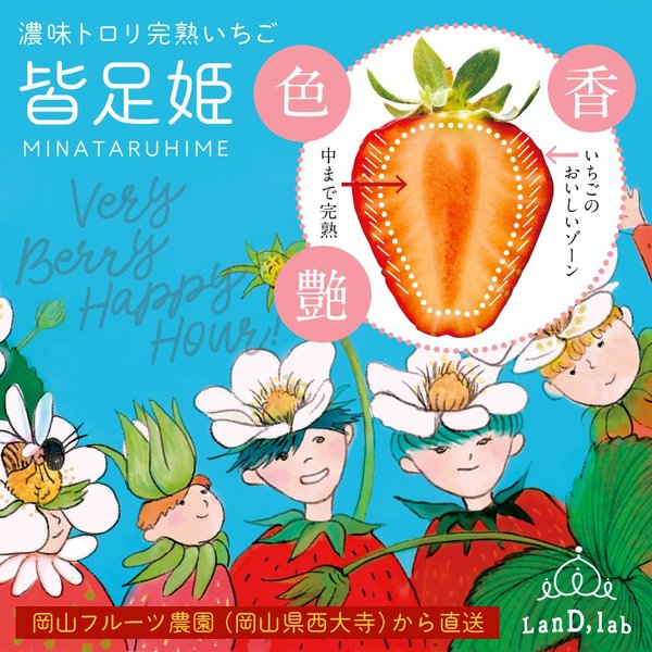 いちごの国ギフト[ Lサイズ ]濃味トロリ完熟いちご『皆足姫(みなたるひめ)』|daiki-foods|02