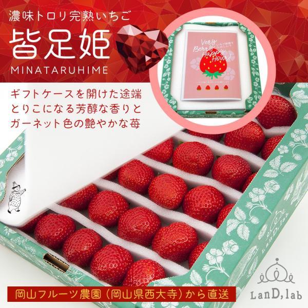 いちごの国ギフト[ Lサイズ ]濃味トロリ完熟いちご『皆足姫(みなたるひめ)』|daiki-foods|04