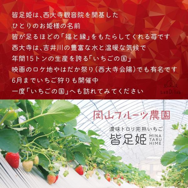 いちごの国ギフト[ Lサイズ ]濃味トロリ完熟いちご『皆足姫(みなたるひめ)』|daiki-foods|05