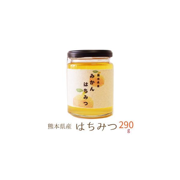 国産 はちみつ 300g 熊本県産 非加熱 濃熟蜂蜜 国産 純粋はちみつ ミカン蜜 みかん蜜 瓶入り プレゼント ギフト