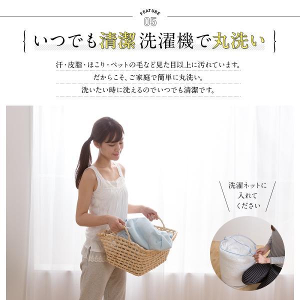 mofua ふんわりタオル地 綿100% 掛布団カバー SD daily-3 06