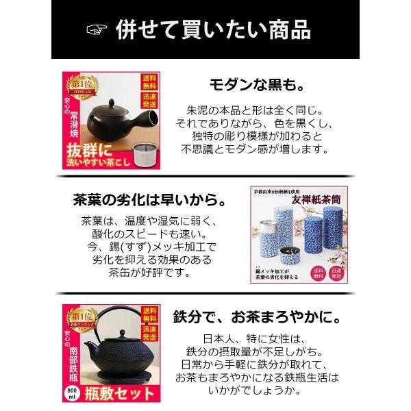 急須 常滑焼 朱 朱泥 深蒸し ステンレス 茶こし 300ml 日本製 きつさこ|daily-central|10