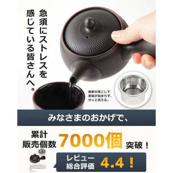 常滑焼 急須 黒 深蒸し 日本製 ステンレス 茶こし 黒泥 300ml きつさこ|daily-central|02