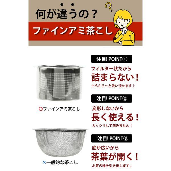 常滑焼 急須 黒 深蒸し 日本製 ステンレス 茶こし 黒泥 300ml きつさこ|daily-central|04