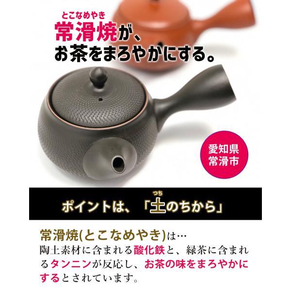 常滑焼 急須 黒 深蒸し 日本製 ステンレス 茶こし 黒泥 300ml きつさこ|daily-central|05