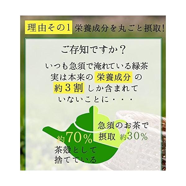 M 5袋セット オーガニック 国産 有機 粉末緑茶 100g×5袋 JAS認定 煎茶100% /セ/|daim-store|02