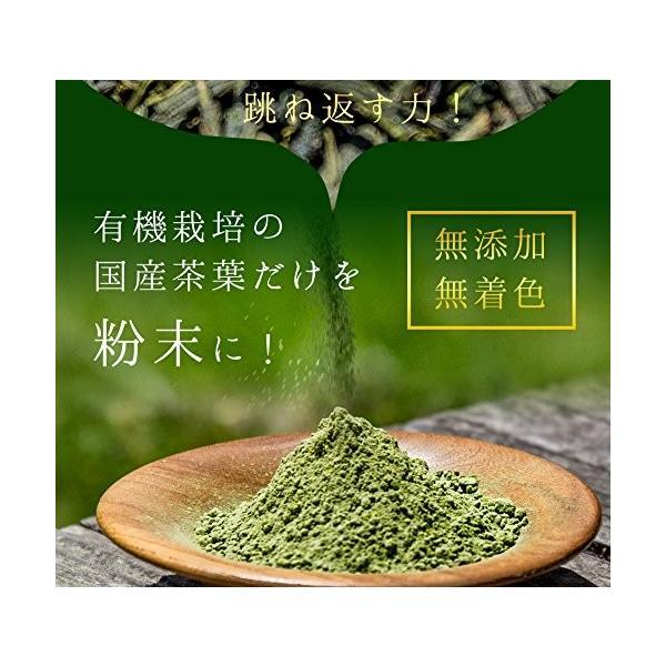 M 5袋セット オーガニック 国産 有機 粉末緑茶 100g×5袋 JAS認定 煎茶100% /セ/|daim-store|04