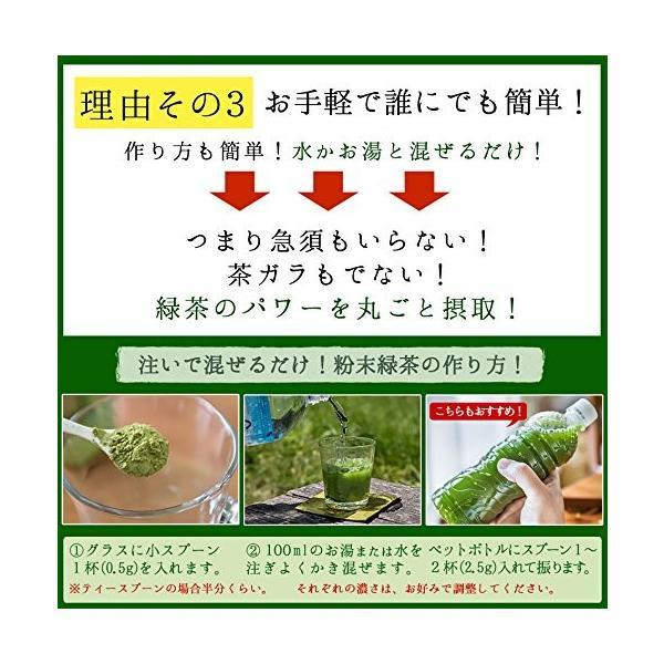 M 5袋セット オーガニック 国産 有機 粉末緑茶 100g×5袋 JAS認定 煎茶100% /セ/|daim-store|06