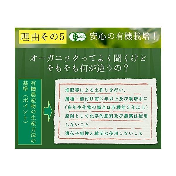 M 5袋セット オーガニック 国産 有機 粉末緑茶 100g×5袋 JAS認定 煎茶100% /セ/|daim-store|08