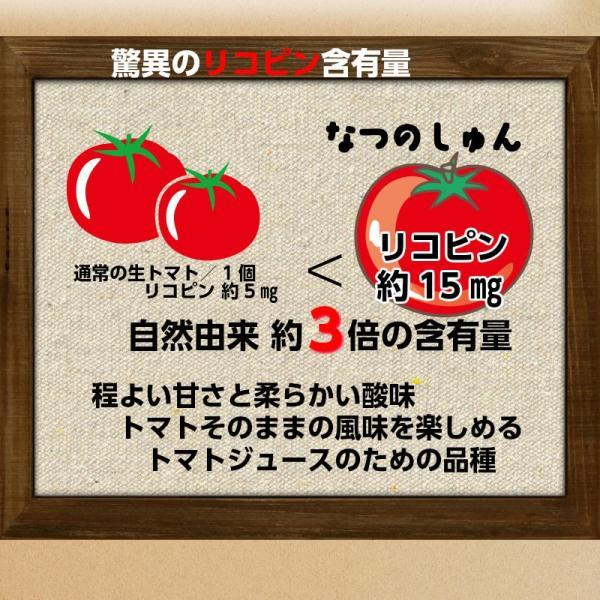残り僅かで終了!【1パック増量】無添加 ストレート & 濃縮トマトジュース  150mg×5袋  送料無料 食塩無添加 リコピン たっぷり daisensounoushop 08