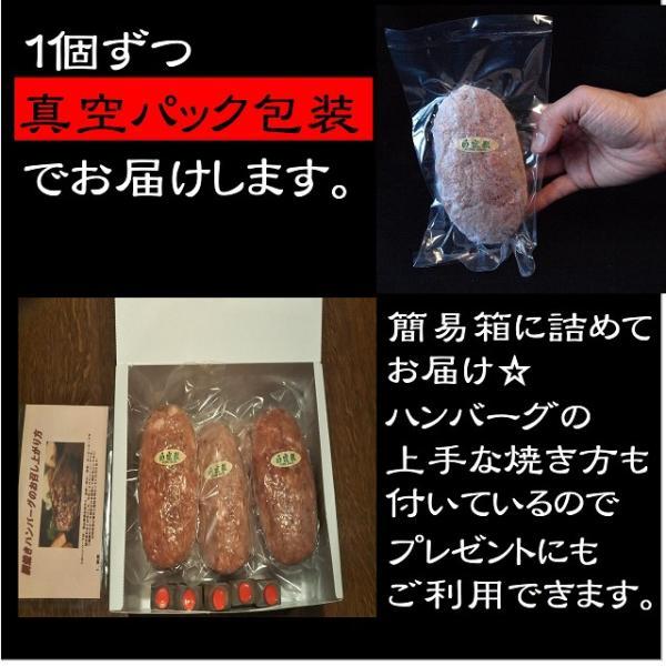 ハンバーグ お試しセット 送料無料 氷見牛 網焼きハンバーグ 150g×2個|danranya|04