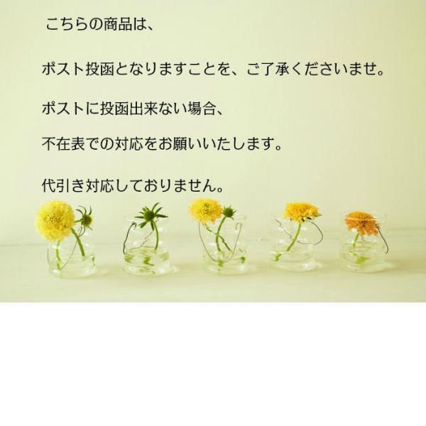 ダスキン スポンジ 台所3色モノトーンセット抗菌タイプS (3個)オマケ付き定型外郵便|dasuwan|08