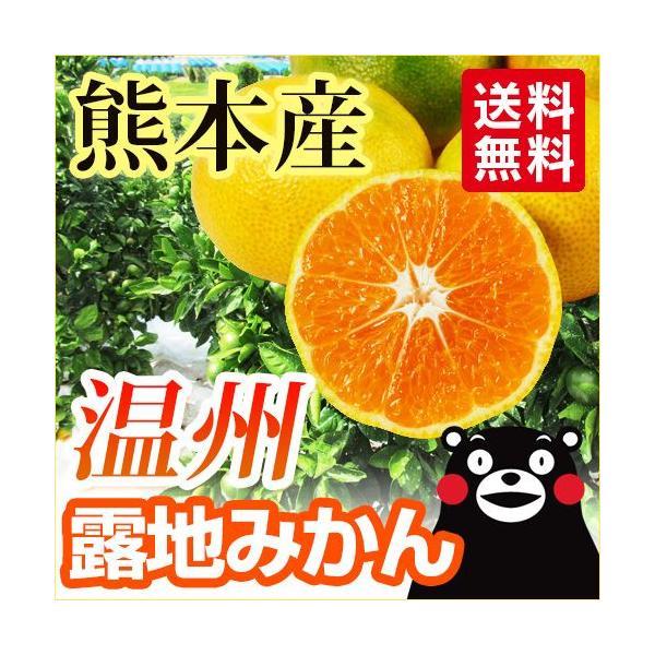 みかん  熊本産  露地 温州 5kg  送料無料   九州 熊本 早生 極早生 みかん 柑橘 オレンジ 栄養 効能 カロリー 旬 甘い 生産量 こたつ