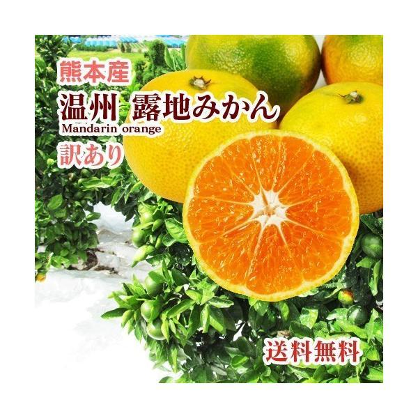 みかん  熊本産  訳あり サイズ混合 5kg  送料無料  九州 熊本 温州 早生 極早生 みかん 柑橘 ミカン こたつ 甘い