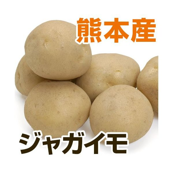 熊本県産  じゃがいも 1袋   野菜セットと同梱で送料無料  根菜 芋 ジャガイモ 九州 熊本