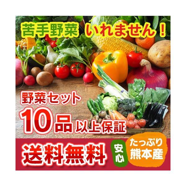 九州 熊本産  野菜セット 定番野菜 大盛 10品以上13品保証  送料無料  クール便   野菜 セット 盛り合わせ|datsu808