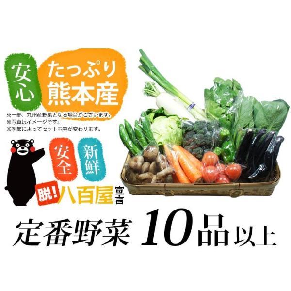 九州 熊本産  野菜セット 定番野菜 大盛 10品以上13品保証  送料無料  クール便   野菜 セット 盛り合わせ|datsu808|02