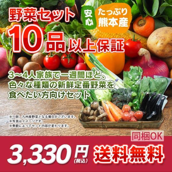 熊本・九州産  野菜セット 大盛 10品以上13品保証  送料無料  クール便   熊本 九州 野菜 盛り合わせ 食材 グルメ ご当地 ギフ ト母の日 父の日 お中元 お歳暮|datsu808|05