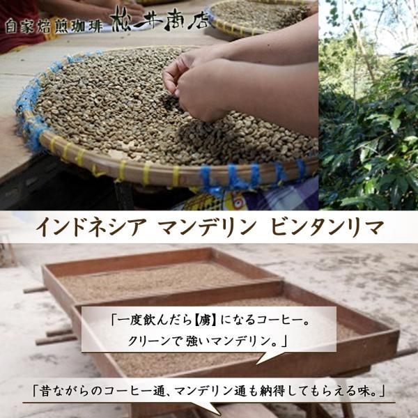 【渋み】マンデリン ビンタマリア|dazaicoffee