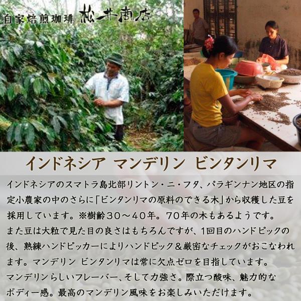 【渋み】マンデリン ビンタマリア|dazaicoffee|02