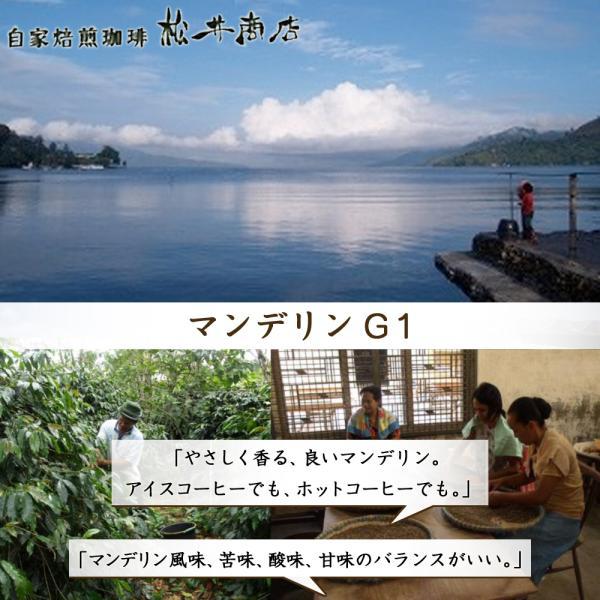 【渋み】マンデリン G1|dazaicoffee
