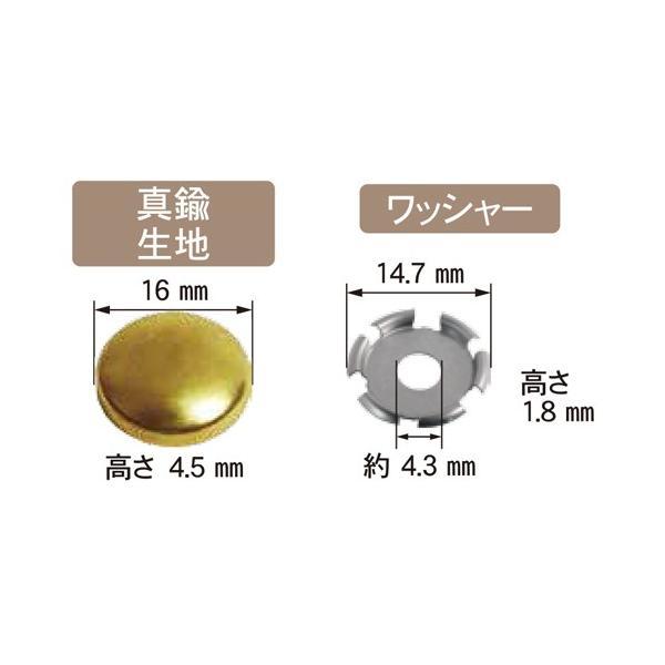 ダンドリビス いたずら防止キャップ 16mm/C-MSXBCX-50 真鍮/Abox:キャップ・ワッシャー各50入 dcmonline 02
