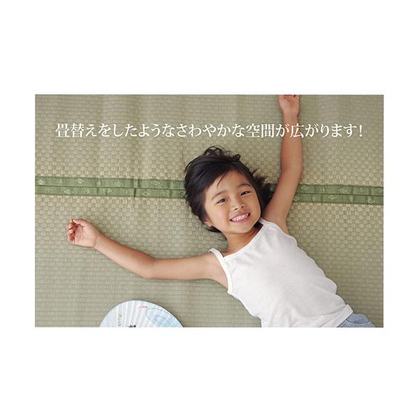 イケヒコ・コーポレーション い草 上敷き 不知火 江戸間/6300134 江戸間4.5畳 dcmonline 04