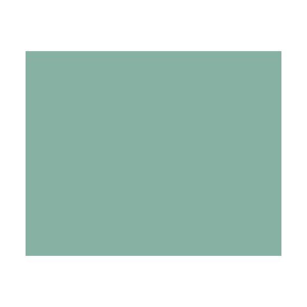 アサヒペン クリエイティブカラースプレー/13アースグリーン 300ml アースグリーン|dcmonline|02