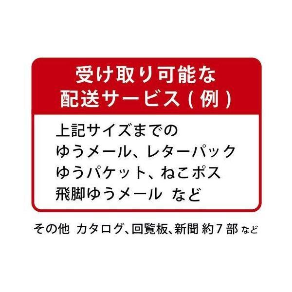 グリーンライフ メール便対応ポスト/FH-75D(TGY) チタングレー/451x161x472mm|dcmonline|05