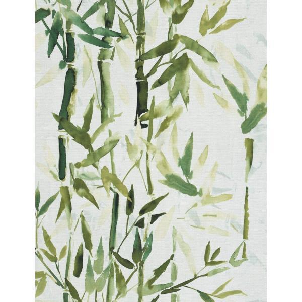 輸入壁紙  ESPOIR NEW AGE  国内在庫 219462 竹 水彩画 緑 アジアンテイスト CASAMANCE テシード DIY  decoall