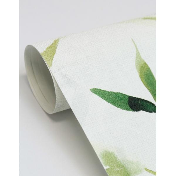 輸入壁紙  ESPOIR NEW AGE  国内在庫 219462 竹 水彩画 緑 アジアンテイスト CASAMANCE テシード DIY  decoall 04